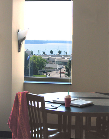 Wisconsin State Law Library: A View out the Window